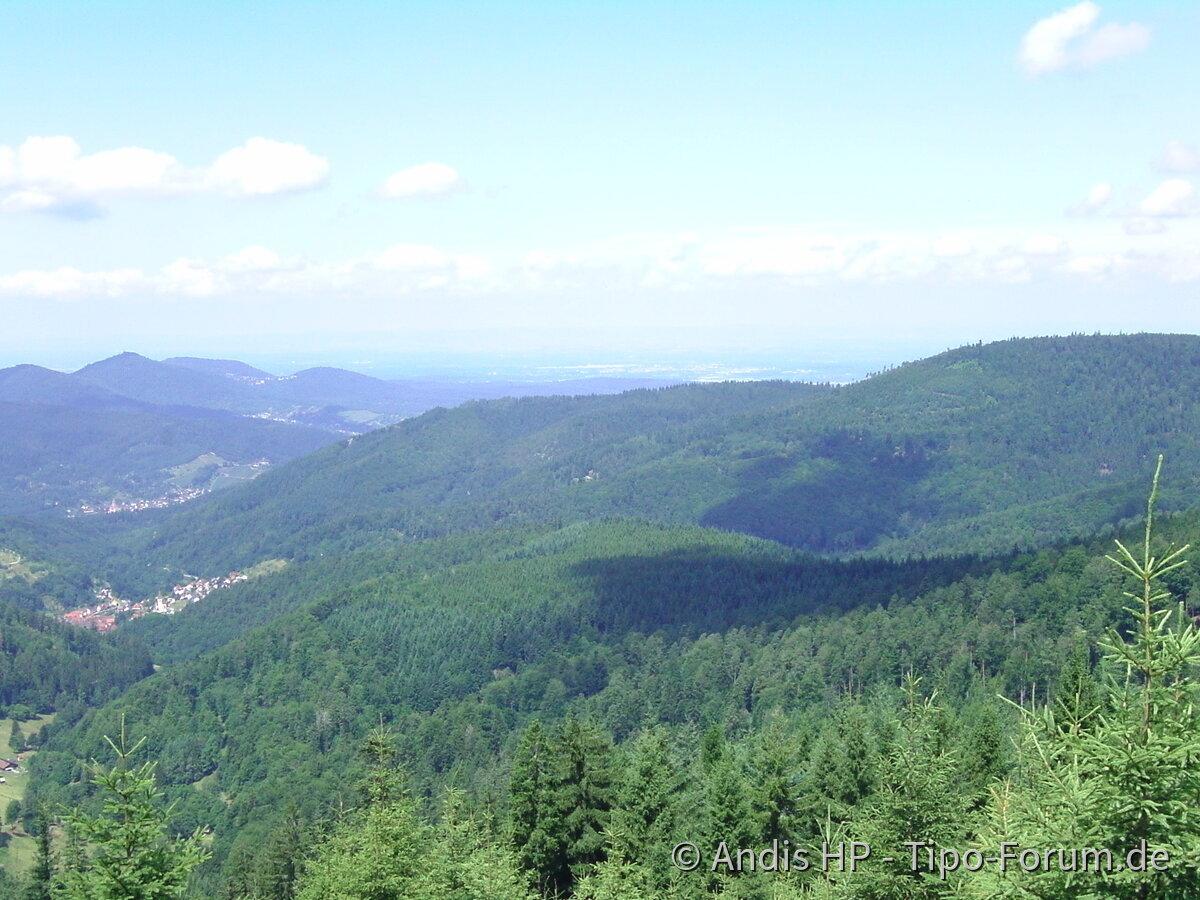 Nordschwarzwaldimpressionen...Kaltenbronn/Teufelsmühle/-turm