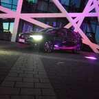 Black Viper bei Nacht