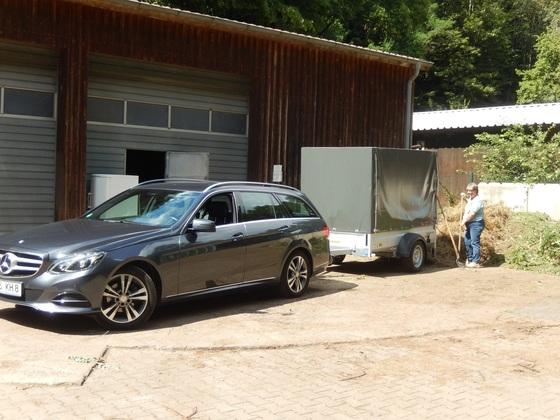 Mit dem Mercedes (und Petra) zur Grünschnittdepo