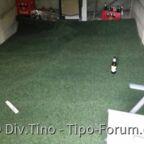 Mein Tipo bekommt Teppich in der Garage