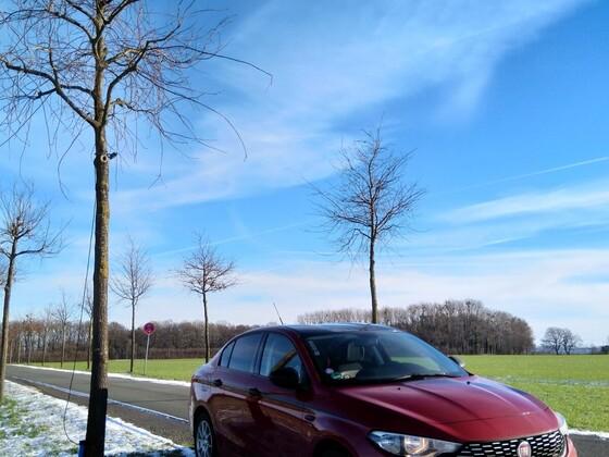 Winterimpressionen aus Paderborn