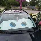 Black Viper Cars